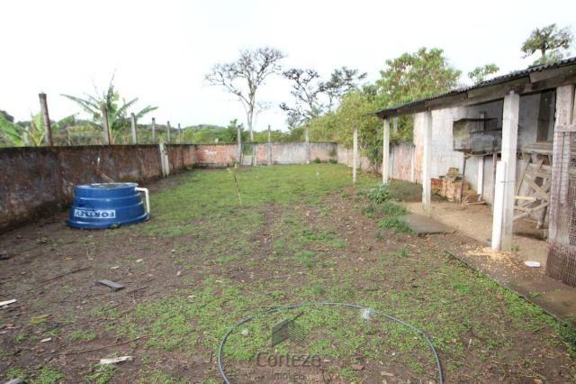 Chácara no Barro Branco em São José dos Pinhais - Foto 14