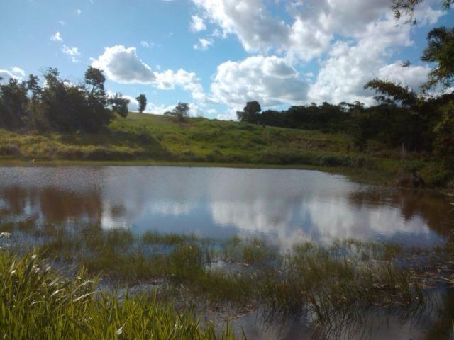 Fazenda 33 Alqueires, Região de Tatuí-Sp, Ideal P/ Haras - Foto 6