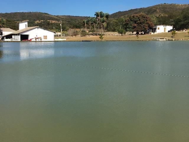 Fazenda gameleira de goias - Foto 2