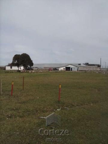 Terreno amplo no Costeira - Foto 2