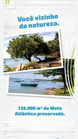 Terrenos na ilha - Foto 2