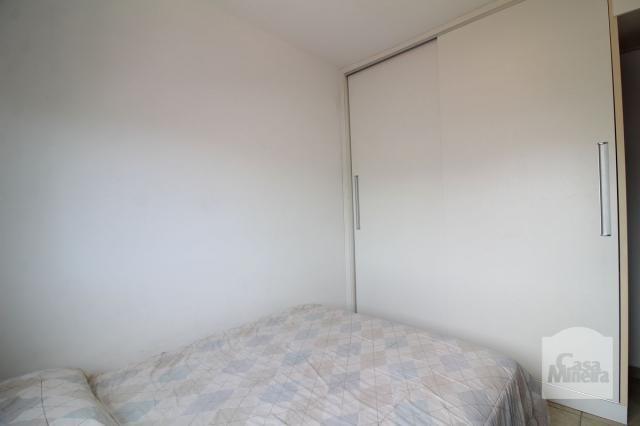 Apartamento à venda com 4 dormitórios em Calafate, Belo horizonte cod:240539 - Foto 6