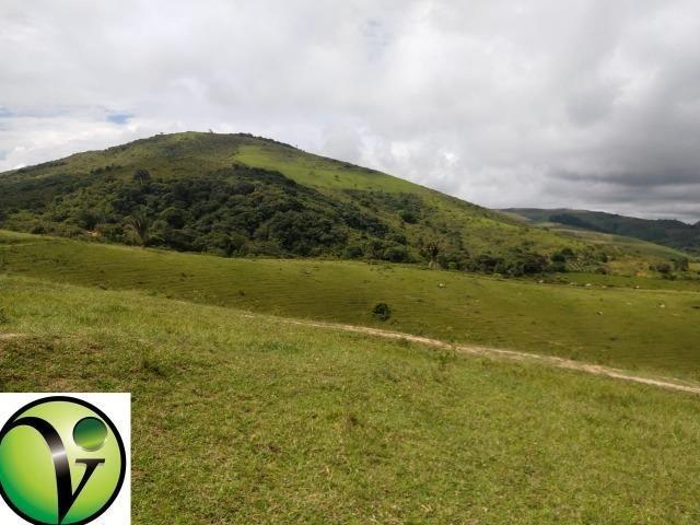 Temos Sua Fazenda de 65 hectares a 1.200 Hectares na Região de Pernambuco/PE - Foto 12