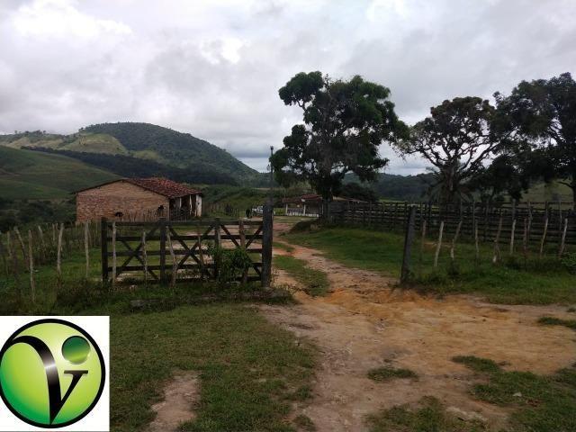 Temos Sua Fazenda de 65 hectares a 1.200 Hectares na Região de Pernambuco/PE - Foto 10