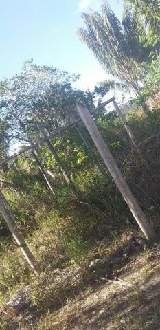 V/t terreno na Bahia - Foto 11