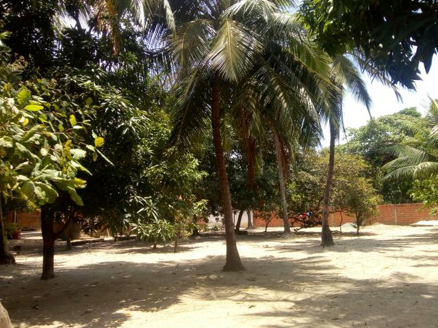Vendo um Sítio em Tibumba - Foto 5