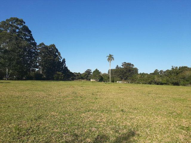 Velleda oferece linda fazenda 70 hectares 10 km da RS-040, aproveita 100% - Foto 9