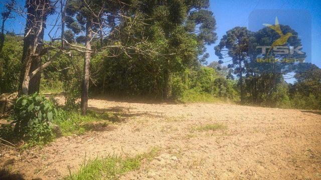 CH0407 - Chácara à venda, 2,5 Alqueires por R$ 195.000 - Zona Rural - Quitandinha/PR - Foto 7