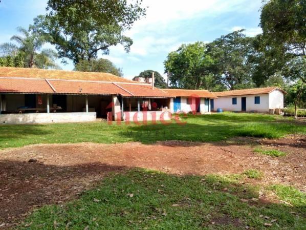 Sítio à venda com 2 dormitórios em Zona rural, Luís antônio cod:V17521 - Foto 11