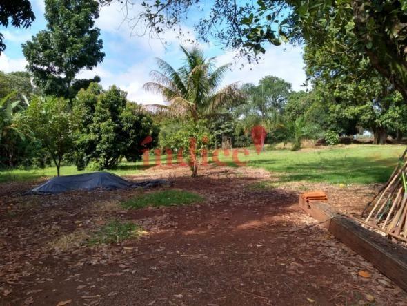 Sítio à venda com 2 dormitórios em Zona rural, Luís antônio cod:V17521 - Foto 10