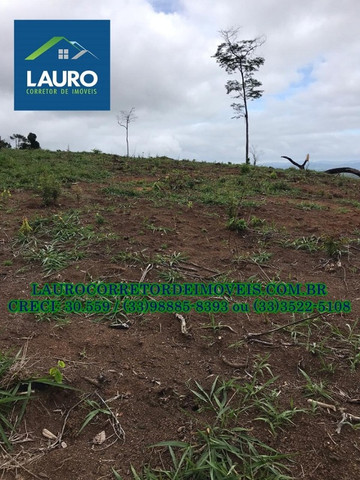 Fazenda com 70,6640 hectares (14,6 alqueires) a 11 km de Teófilo Otoni - Foto 7