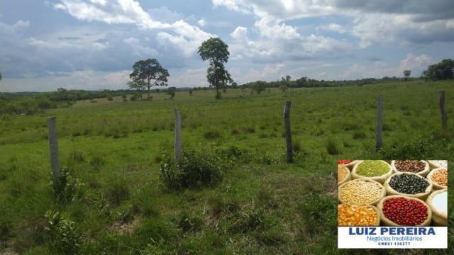 FAZENDA À VENDA EM MIRANDA - MS - DE 569 HECTARES - (PECUÁRIA) - Foto 2
