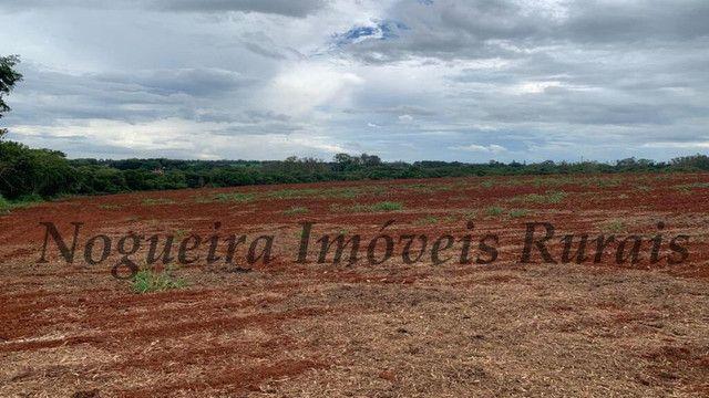 Sítio com 145.200 m², frente com a Castelo Branco, oportunidade (Nogueira Imóveis Rurais) - Foto 4