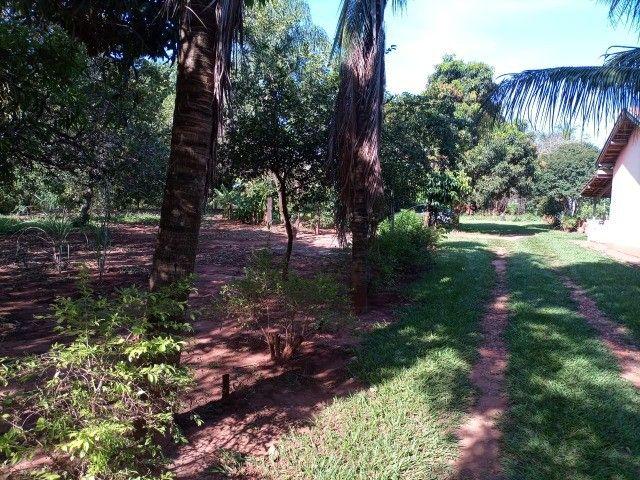 Chacara Arco   Íris 3200 ms2 de área-10 minutos do centro - Foto 18
