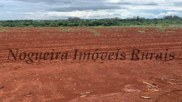 Sítio com 145.200 m², frente com a Castelo Branco, oportunidade (Nogueira Imóveis Rurais) - Foto 13