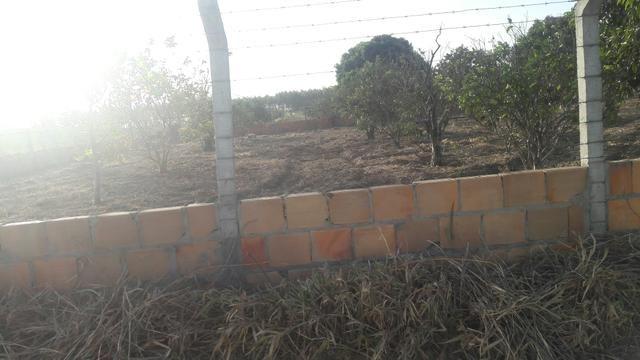 Terreno no povoado sape em Itaporanga