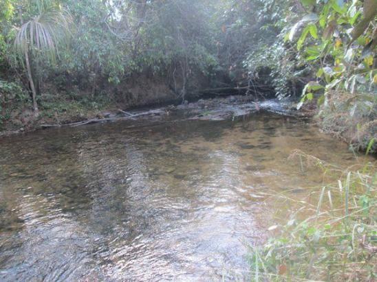 Fazenda Ponte Alta - TO - Foto 3