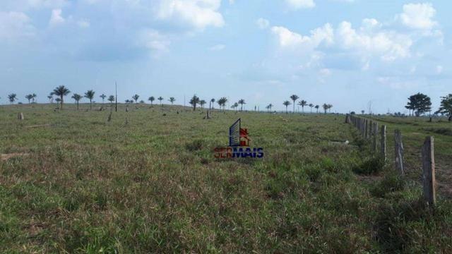 Fazenda muito bem localizada nas proximidade de Cujubim/RO - Foto 5