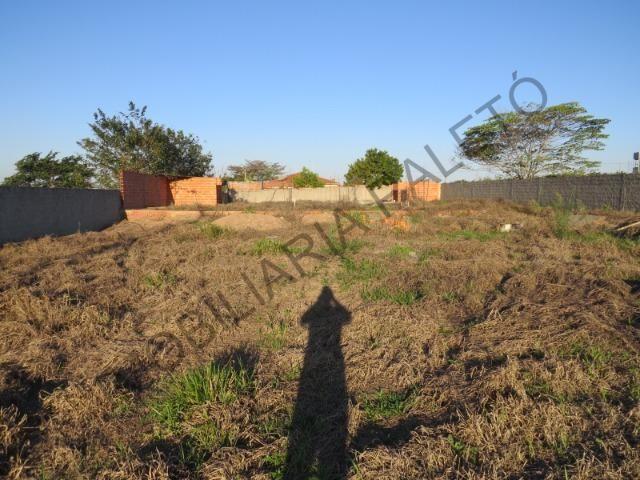 REF 762 Terreno 1289 m², todo murado, totalmente plano, Imobiliária Paletó - Foto 13