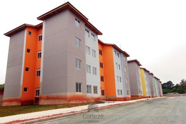Apartamento 3 quartos em Colombo - Foto 2