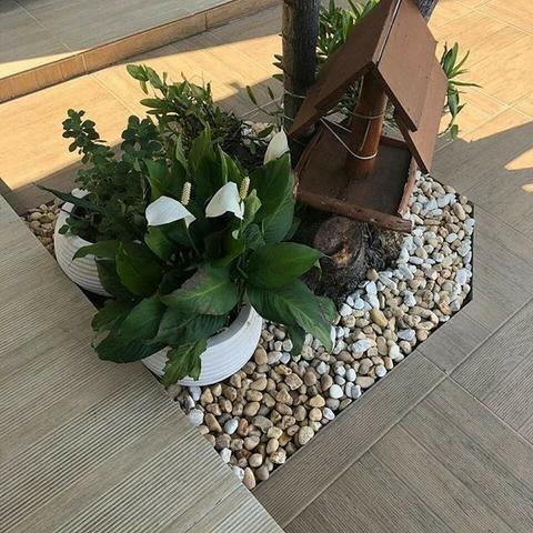 Manutenção de jardim - Foto 6