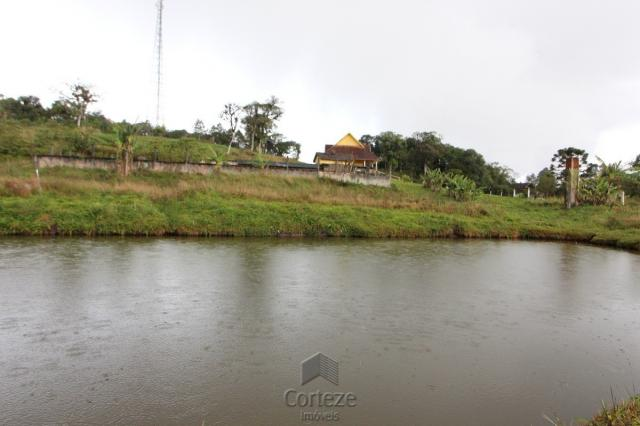 Chácara no Barro Branco em São José dos Pinhais - Foto 16