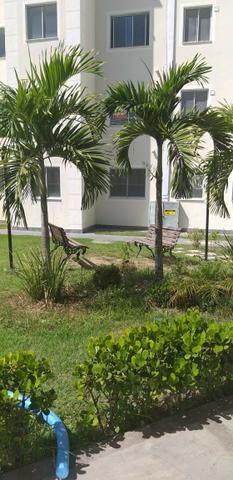 Apartamento 2/4 entrada parcelada em 72 x - 1 ano gratis de condominio - Pronto para Morar - Foto 5