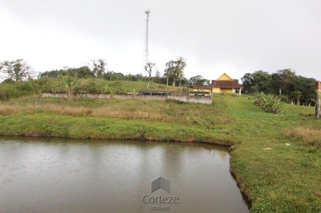 Chácara no Barro Branco em São José dos Pinhais - Foto 15