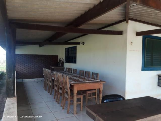 Fazenda para venda em estrela do norte, zona rural, 3 dormitórios, 1 suíte, 1 banheiro - Foto 13