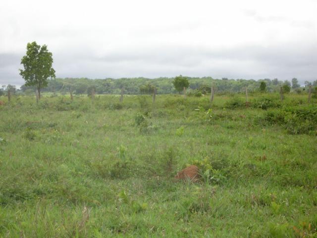 Fazenda em Poconé Cangas próximo á usina com 151 hectares - Foto 4
