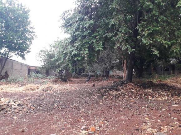 Casas de 1 dormitório(s) no Carmo em Araraquara cod: 10667 - Foto 8
