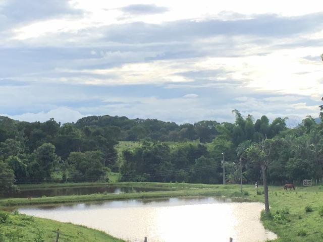 Sítio em petrolina de Goiás, Quase 6 alqueires