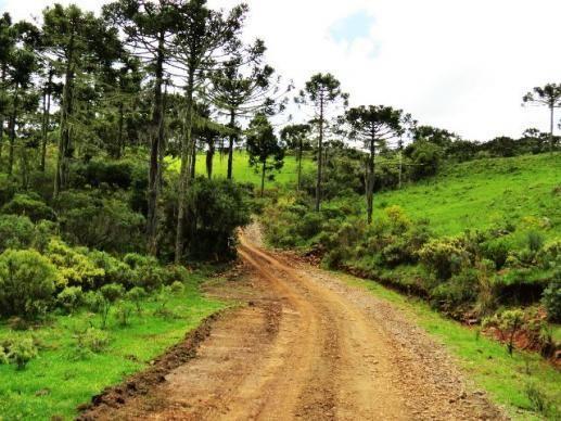 Linda fazenda em Urubici - Foto 7