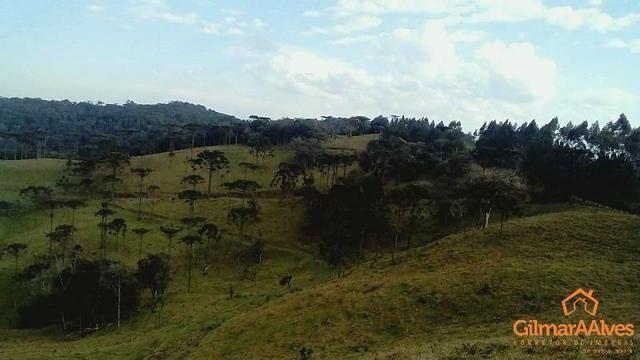 Fazenda para Venda, São Bento do Sul / SC, bairro Sertãozinho - Foto 8