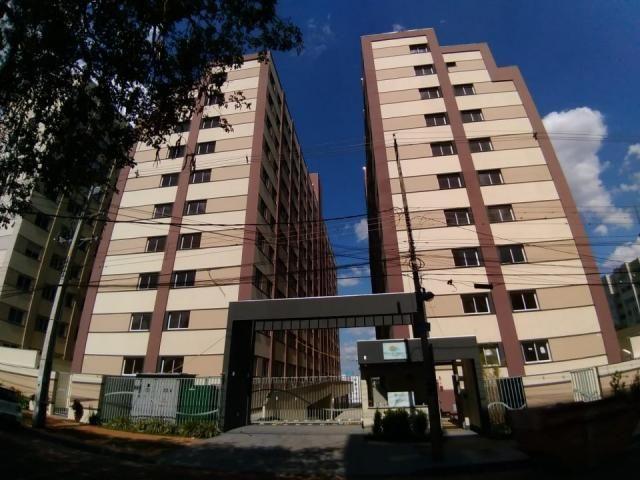 8078   apartamento à venda com 2 quartos em jd alvorada, maringá - Foto 2