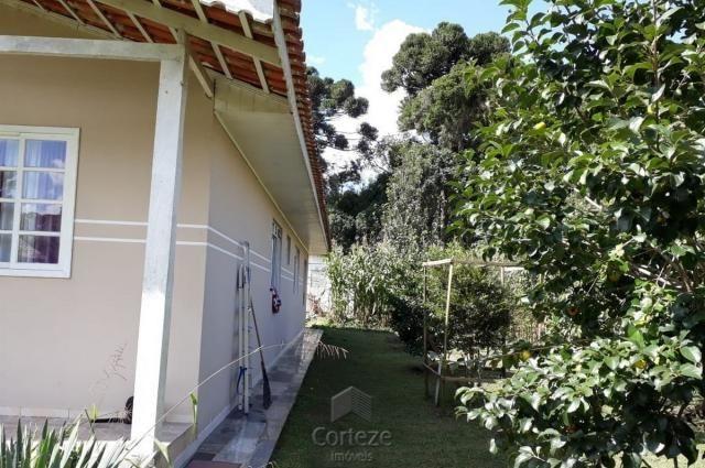Chácara com 42.350,00m² em Agudos do Sul - Foto 5