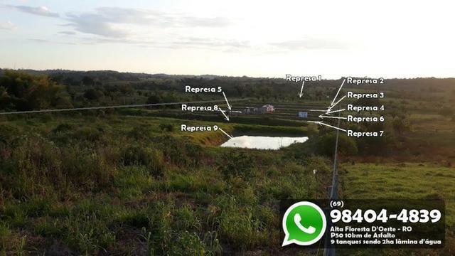 Chácara com 9 Represas no Asfalto em Alta Floresta - Foto 10