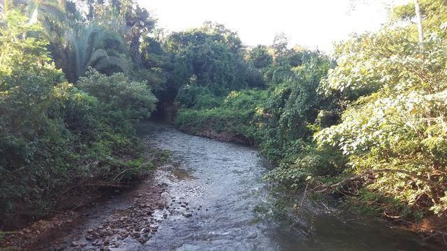 (Fazenda com 297ha em Mato Grosso) no município de Alto Paraguai(MT-409 KM35) - Foto 17