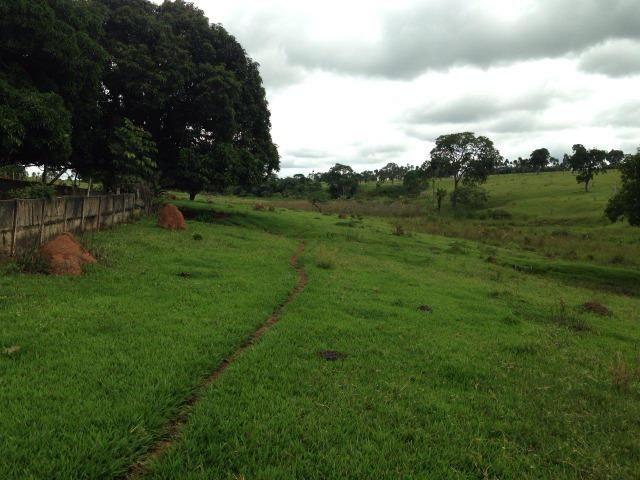 25 Alqueires-Avelinópolis Goiás-Próx. Goiânia-Excelente Preço R$ 150.000,00 o Alqueire - Foto 18
