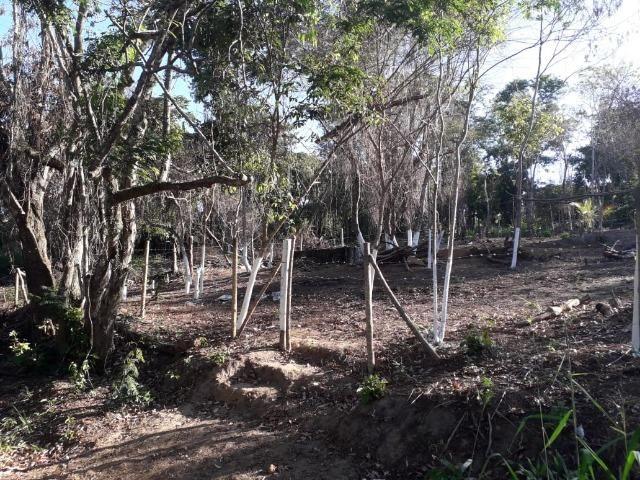 Terreno em Pindobal - Bambuí - Maricá - Foto 5