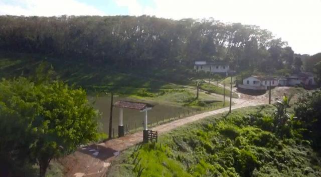 Fazenda de Cacau, Látex e Mogno no Brasil - Cidade Ituberá-BA - Foto 3