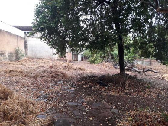 Casas de 1 dormitório(s) no Carmo em Araraquara cod: 10667 - Foto 11