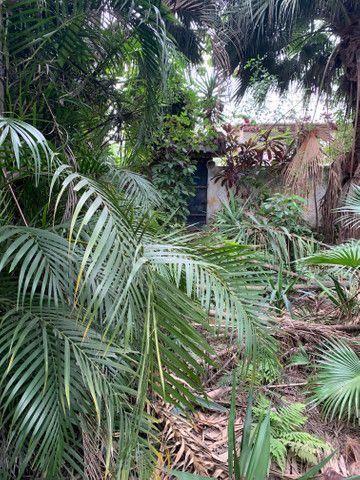 Sítio em Itaguaí - Foto 5