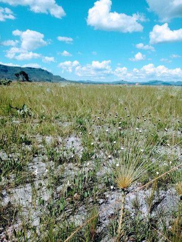 Oportunidade Única! Vendo terreno 1000mts Alto Paraíso Chapada dos Veadeiros - Foto 8
