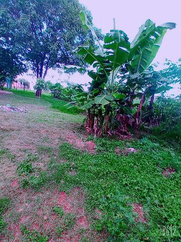Terreno comodato