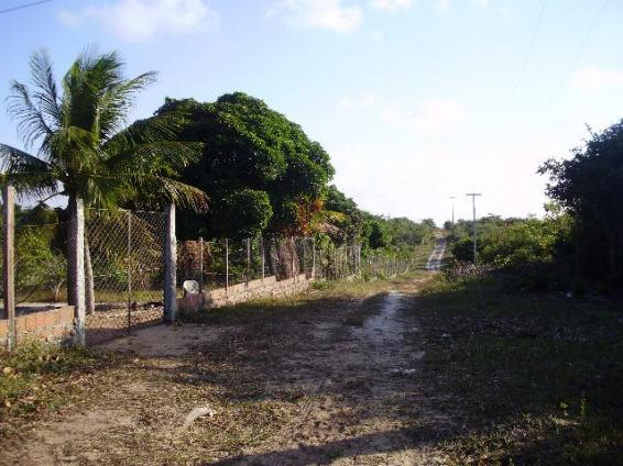 Terrenos em Pium de vários tamanhos e preços - Foto 10