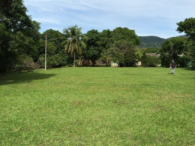 Excelente Sítio - Com 2 Casas - Piscina 16 300 m² - Foto 2