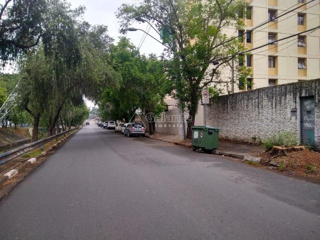 Terreno para alugar com 0 dormitórios em Cambuí, Campinas cod:TE049120 - Foto 3