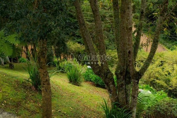Casa à venda com 5 dormitórios em Centro, Monte verde cod:CA008428 - Foto 6