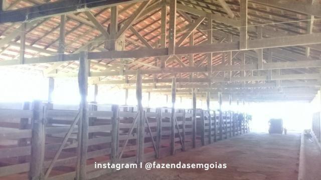Fazenda para venda em Formosa-GO - Foto 2